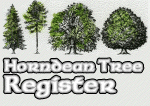 Horndean Tree Register